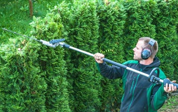 Inverness hedge trimming costs